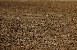 Freshly planted dirt for agriculture. stock photography