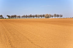 Freshly ploughed acre with row Stock Photography