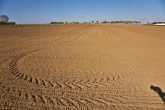 Freshly ploughed acre with row of trees Stock Images