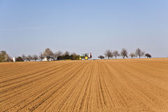 Freshly ploughed acre with row of trees Royalty Free Stock Photography