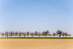 Freshly ploughed acre with row Stock Image