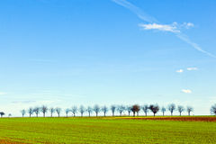 Freshly ploughed acre in spring Stock Photo