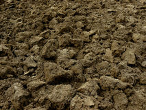 Freshly ploughed field Royalty Free Stock Images
