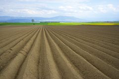 Freshly ploughed field in Switzerland Royalty Free Stock Images