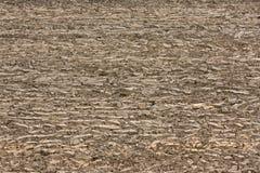 Freshly plowed field background Royalty Free Stock Photo