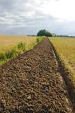 Freshly plowed field furrow. Stock Images