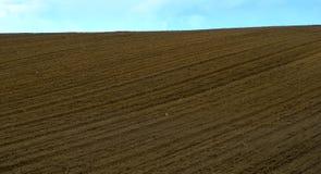 Freshly plowed field in summer Royalty Free Stock Photos