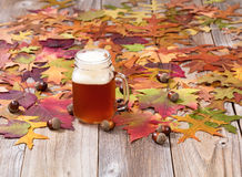 Freshly poured beer with autumn foliage and acorns on rustic woo Stock Image