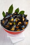 Freshly prepared blue mussels Royalty Free Stock Photography