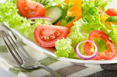 Freshly Prepared Salad Royalty Free Stock Photography