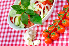 Freshly prepared salad  - vegan food Royalty Free Stock Photos
