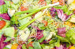 Freshly prepared salads Stock Photo