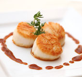 Freshly prepared scallops. On a dinner plate stock images