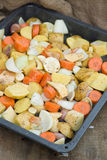 Freshly prepared seasonal Winter vegetables in roasting tin Stock Images