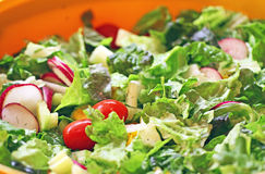Freshly Prepared Tossed Salad Stock Photography
