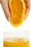 Freshly pressed orange juice. Fresh orange fruit will be squeezed Royalty Free Stock Photography