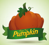 Freshly Pumpkin from the Farm with Green Ribbon, Vector Illustration Royalty Free Stock Images