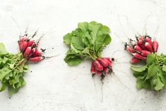 Freshly radish with green leaves on table. Top view.  Stock Image