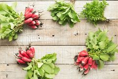 Freshly radish with green leaves on table. Top view.  Stock Photography