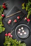 Freshly ripped radishes Royalty Free Stock Photo