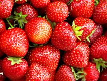 Freshly ripped strawberries in close up Stock Photos