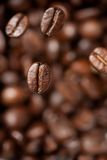Freshly roasted coffee bean Stock Photos