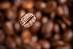 Freshly roasted coffee bean Stock Photo
