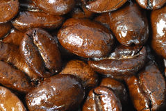 Freshly roasted coffee beans. Darkly roasted arabica coffee beans royalty free stock photography