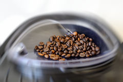 Freshly roasted coffee beans Royalty Free Stock Image
