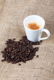 Freshly roasted coffee beans and a cup of coffee Stock Image