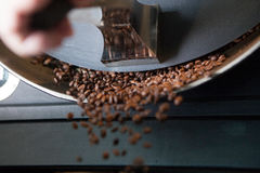 Freshly roasted coffee beans - landscape Royalty Free Stock Photos