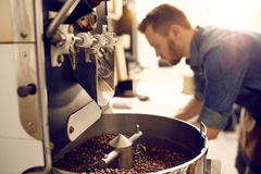 Freshly roasted coffee beans in a modern machine Stock Images