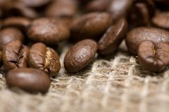 Freshly Roasted Coffee Beans On Sackcloth Royalty Free Stock Image
