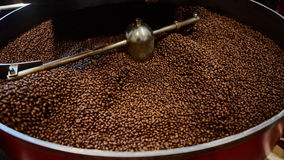 Freshly roasted coffee beans Royalty Free Stock Images