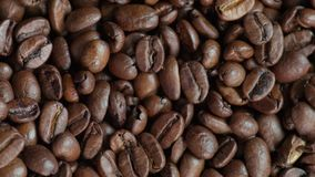 Freshly roasted coffee beans stock footage