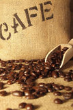 Freshly roasted coffee beens Royalty Free Stock Photo