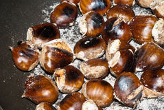 Freshly roasting chestnut. Roasting chestnut in a typical italian pan Stock Photography