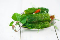 Freshly-salted cucumbers on vintage enamel sieve Royalty Free Stock Photos