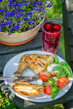 Freshly served barbeque dinner in the garden Stock Images