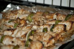 Freshly shish kebab with greens Royalty Free Stock Photography