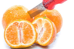 Freshly sliced mandarins Stock Photography