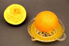 Freshly squeezed Stock Photography