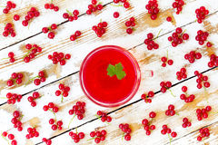 Freshly squeezed red juice with green leaf currant Stock Image