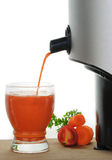 Freshly Squeezed Vegetable Juice stock photography
