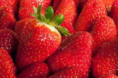 Freshly Strawberry Royalty Free Stock Photos