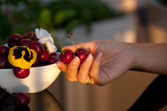 Freshly sweet cherries. Women hand holding freshly sweet cherries Stock Image