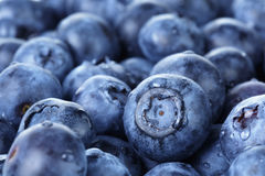 Freshly washed blueberries close up photo Stock Images