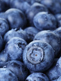 Freshly washed blueberries close up photo Royalty Free Stock Photography