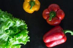 Freshly washed fresh vegetables over black background. Stock Image