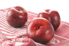 Freshly washed plums Royalty Free Stock Photography